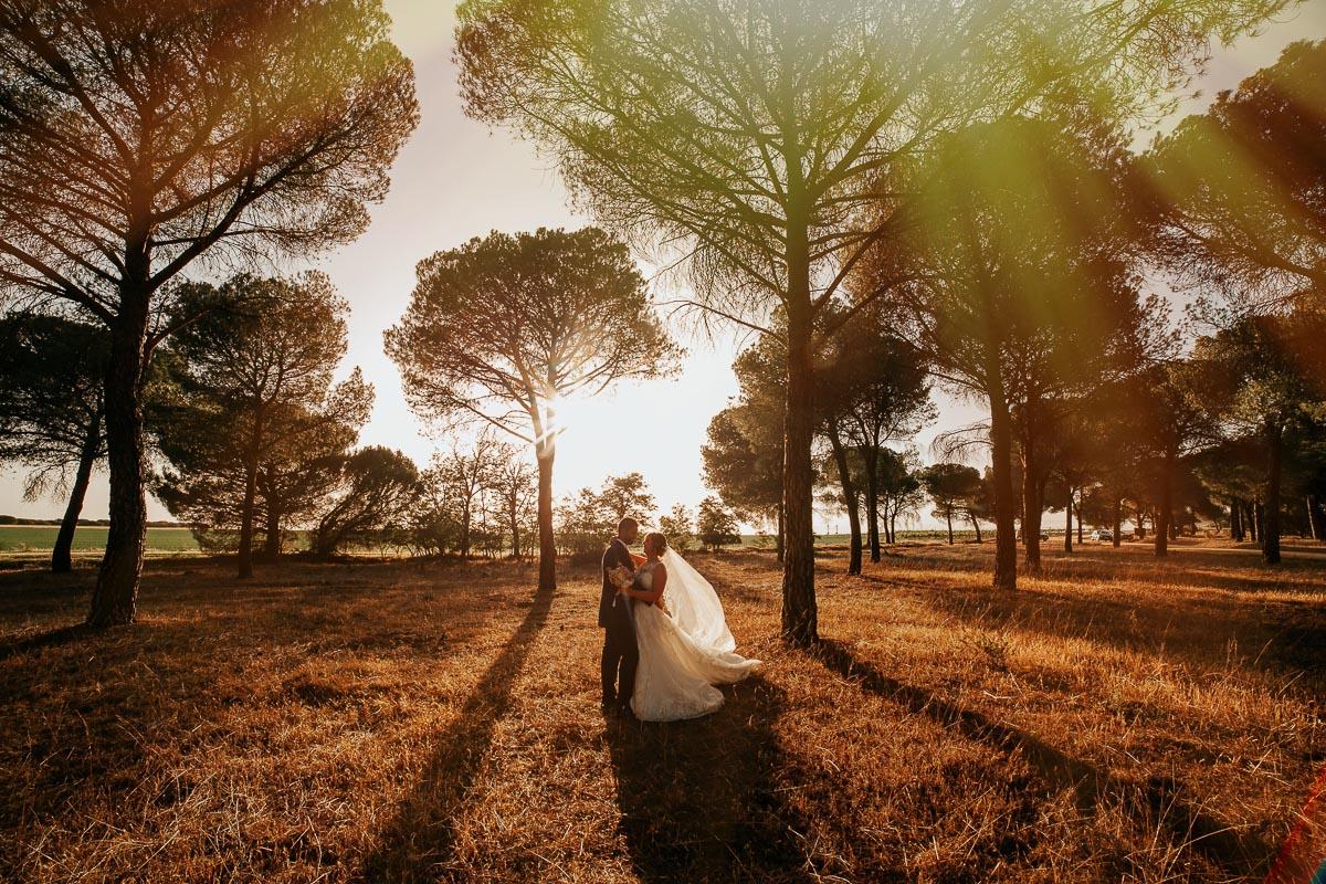 Fotógrafo de boda Valladolid boda en Villabrágima encinar del rey Mireya y Javier-61
