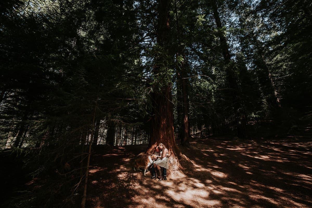 Preboda en el bosque de sequoias Sara y David weloveyourlove 003