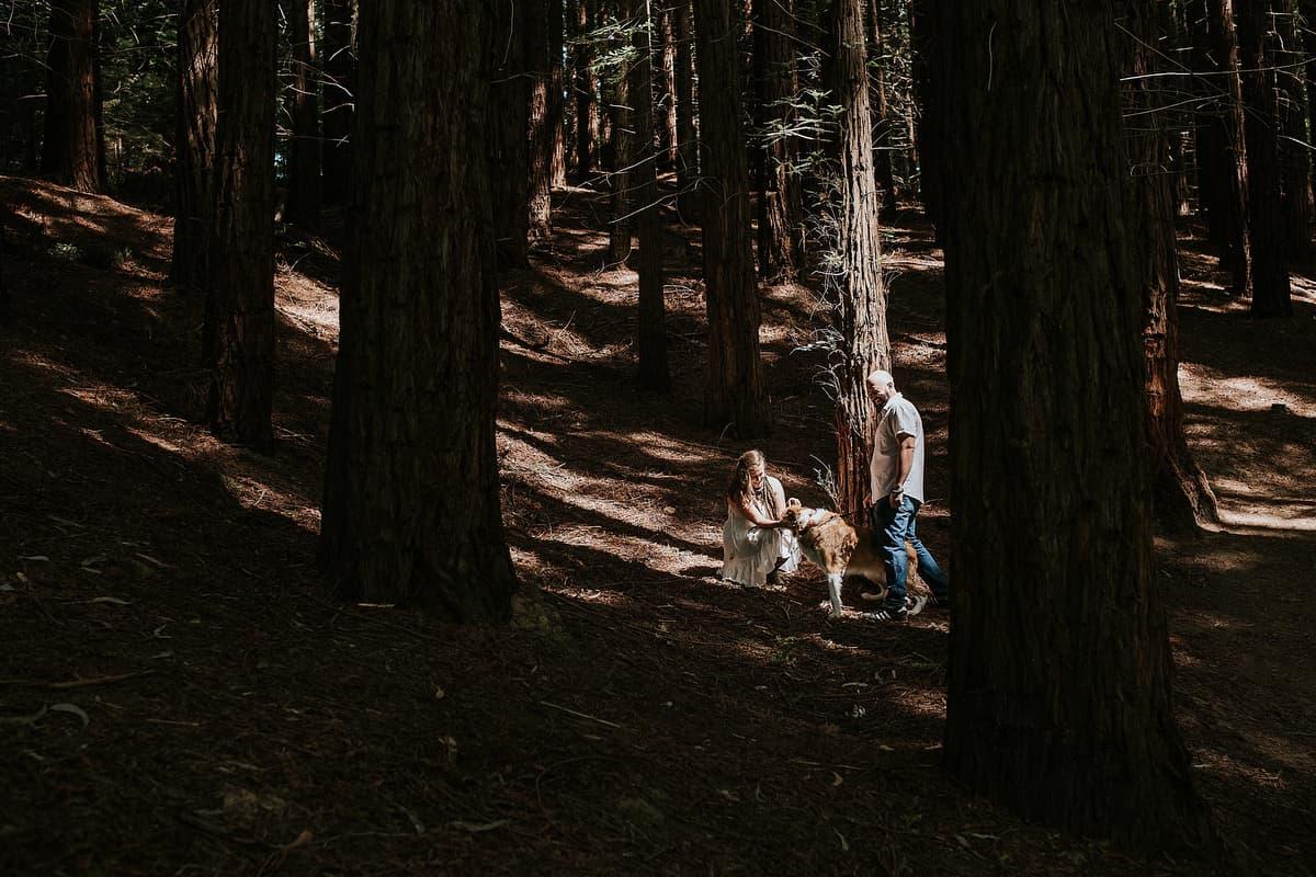 Preboda en el bosque de sequoias Sara y David weloveyourlove 004