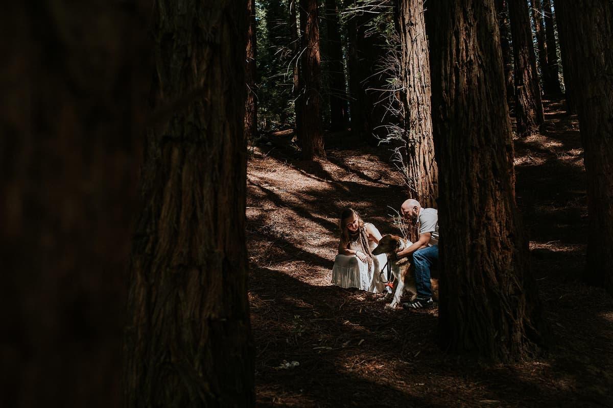 Preboda en el bosque de sequoias Sara y David weloveyourlove 005