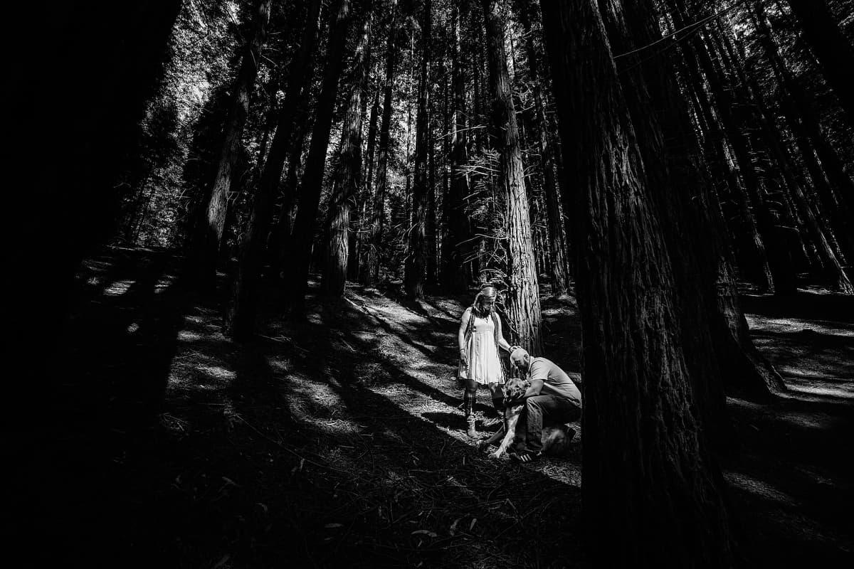 Preboda en el bosque de sequoias Sara y David weloveyourlove 006