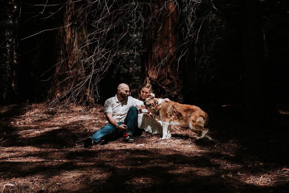 Preboda en el bosque de sequoias Sara y David weloveyourlove 008