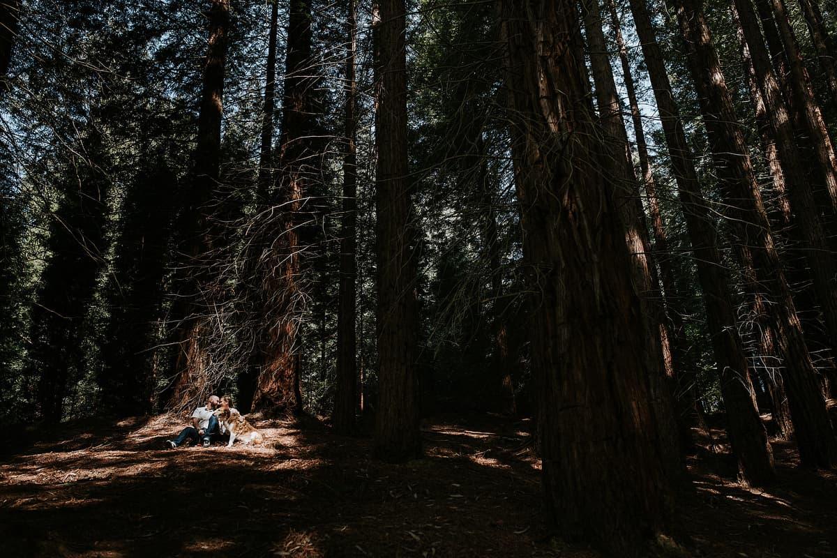 Preboda en el bosque de sequoias Sara y David weloveyourlove 010