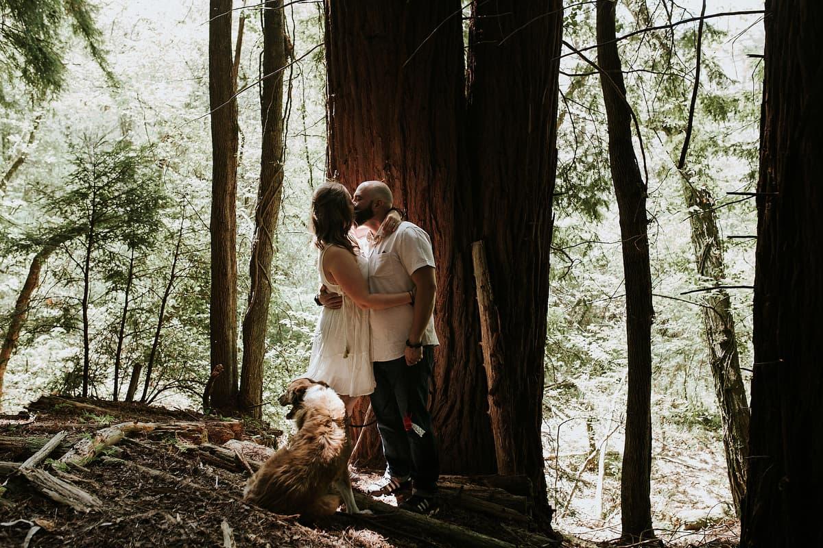 Preboda en el bosque de sequoias Sara y David weloveyourlove 019