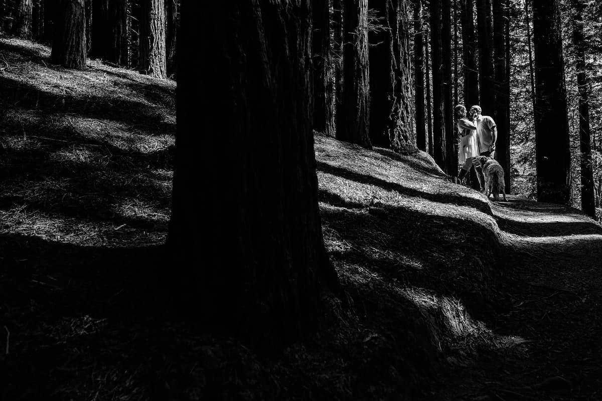Preboda en el bosque de sequoias Sara y David weloveyourlove 024