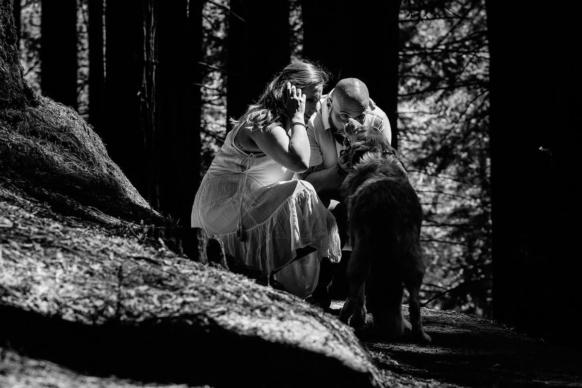 Preboda en el bosque de sequoias Sara y David weloveyourlove 025