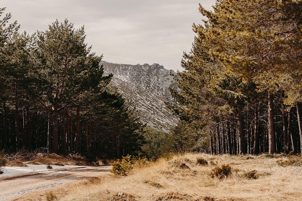 Preboda en la montaña de Palencia Velilla del río Carrión Sara y Daniel-40